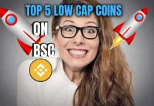 Top 5 low cap coins on bsc