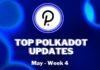 Top Polkadot Updates| May Week 4