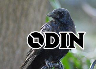 ODIN Protocol - Data Oracle Platform for Geo DB
