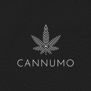 Crypto moonshots Cannumo