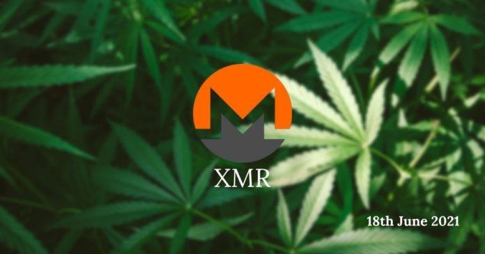 XMR Price Prediction