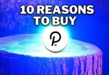 10 Reasons to Buy Polkadot (DOT)