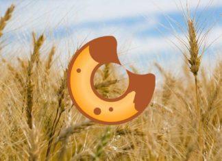 How to Do BakerySwap Farming, Mint NFTs