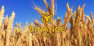 Binance Chain Wallet: How to Setup and Use the Wallet Direct Feature