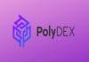 PolyDEX - Revolutionizing the DEX Space