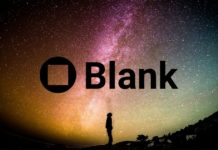 Blank Wallet Review