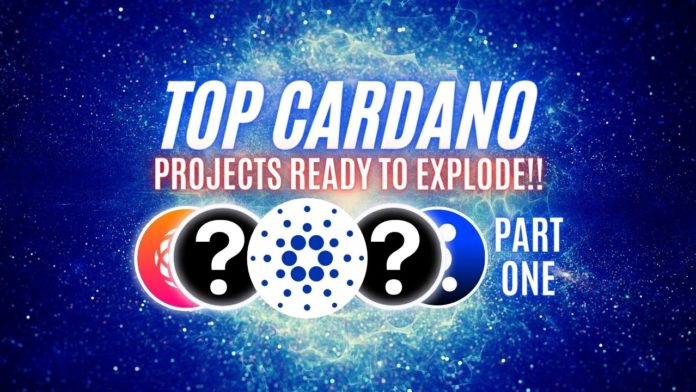 Cardano Top 10 Projects.