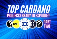 Cardano Top 10 Projects