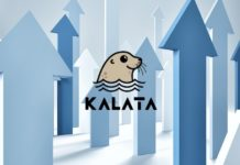 BSC Synthetics Trading Protocol Kalata Volumes Surge 800%