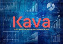 Kava USDX borrow