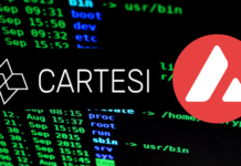 Cartesi & Avalanche Partnership